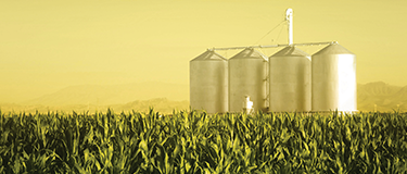 Investimento Agro Digital