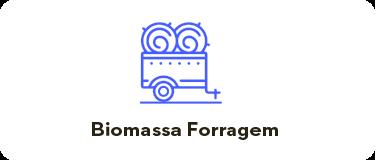 Biomassa, Fenação e Forragem